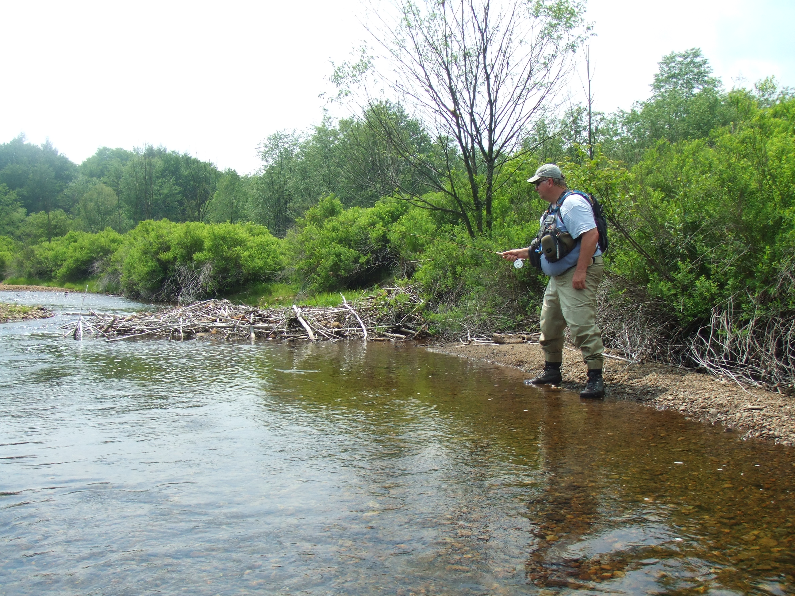 Fly Fishing for Native Brook Trout Guided Tours | Northeast PA Fly Fishing