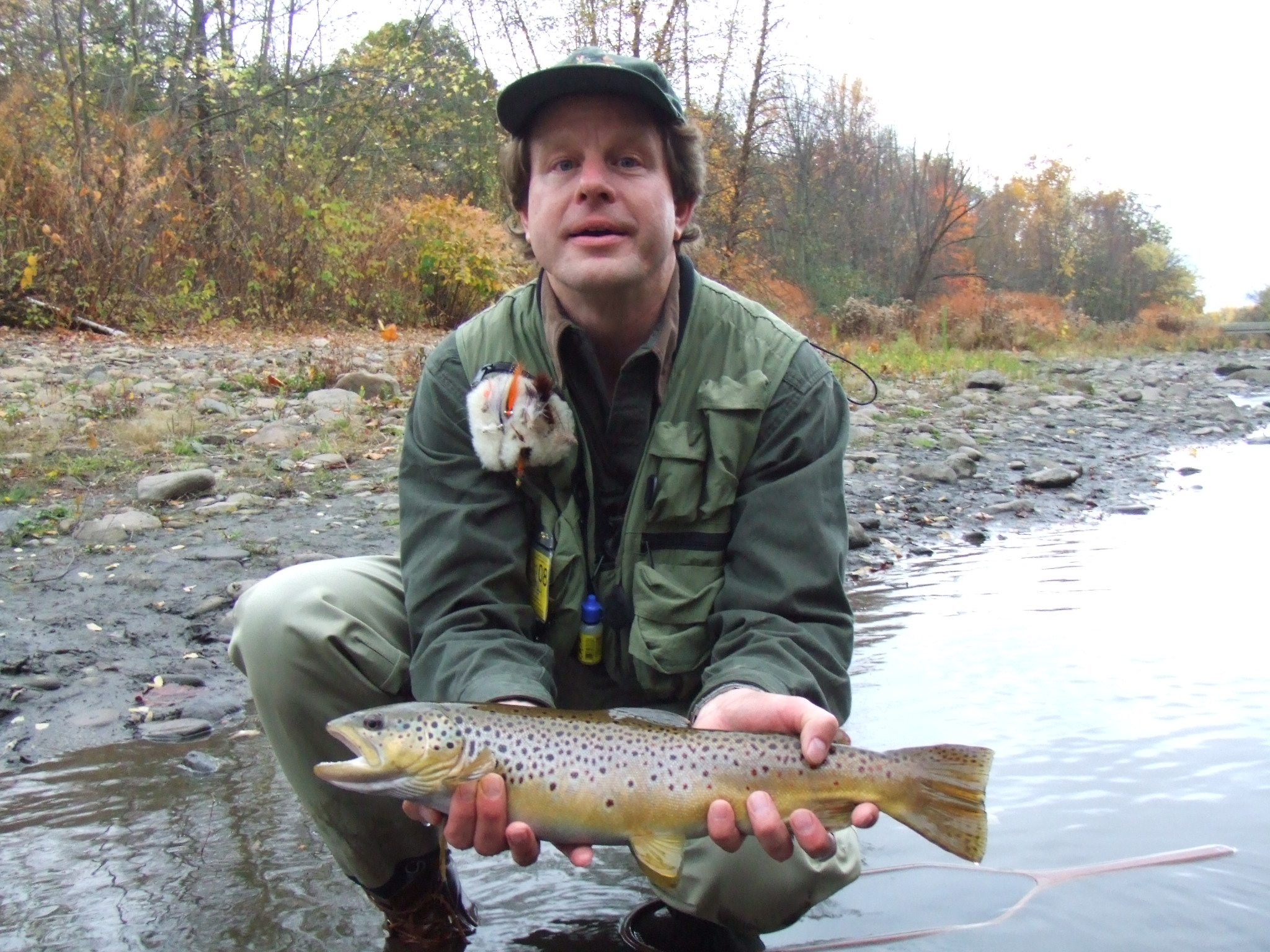 Fly Fishing for Wild Brown Trout Guided Tours   Northeast PA Fly Fishing